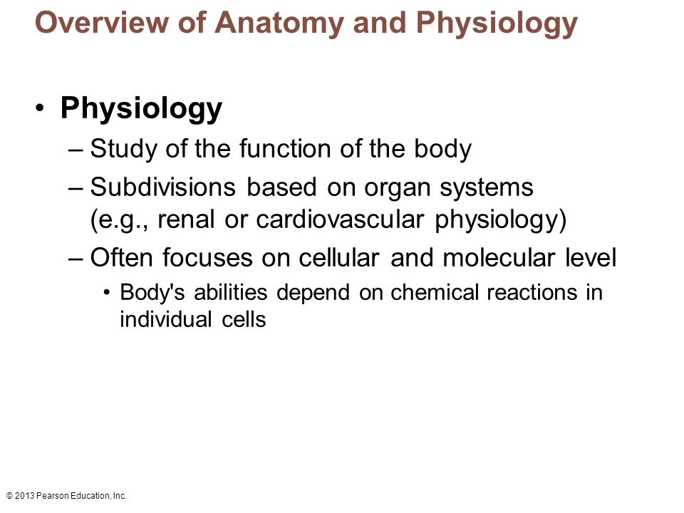 a complete overview of anatomy and physiology Free human anatomy and physiology practice tests with advanced reporting, full  solutions, and progress tracking.