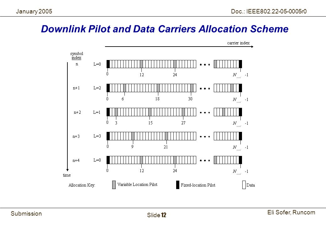 Downlink Pilot and Data Carriers Allocation Scheme