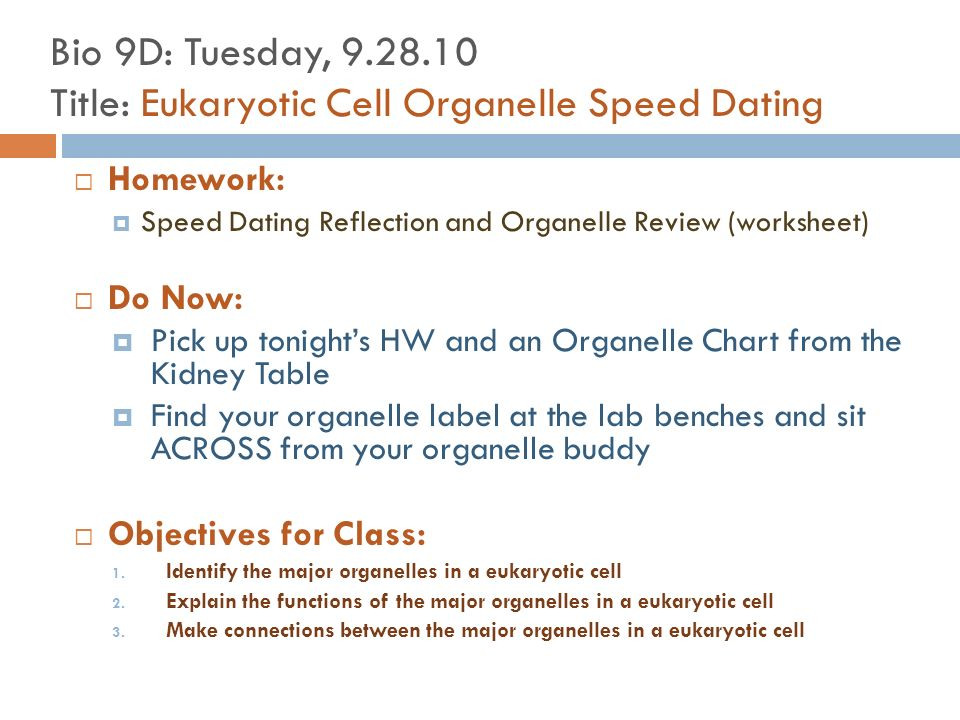 Bio 9D Front of room New Seats For This Room Davnys Carlheb – Cell Organelle Research Worksheet