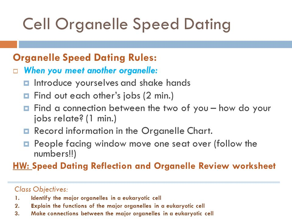 Speed dating protocol