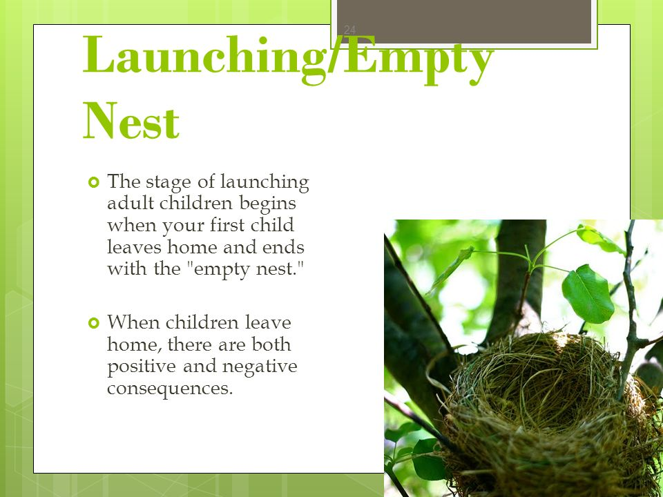 Launching/Empty Nest The stage of launching adult children begins when your first child leaves home and ends with the empty nest.