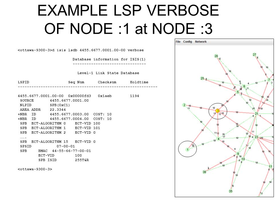 EXAMPLE LSP VERBOSE OF NODE :1 at NODE :3