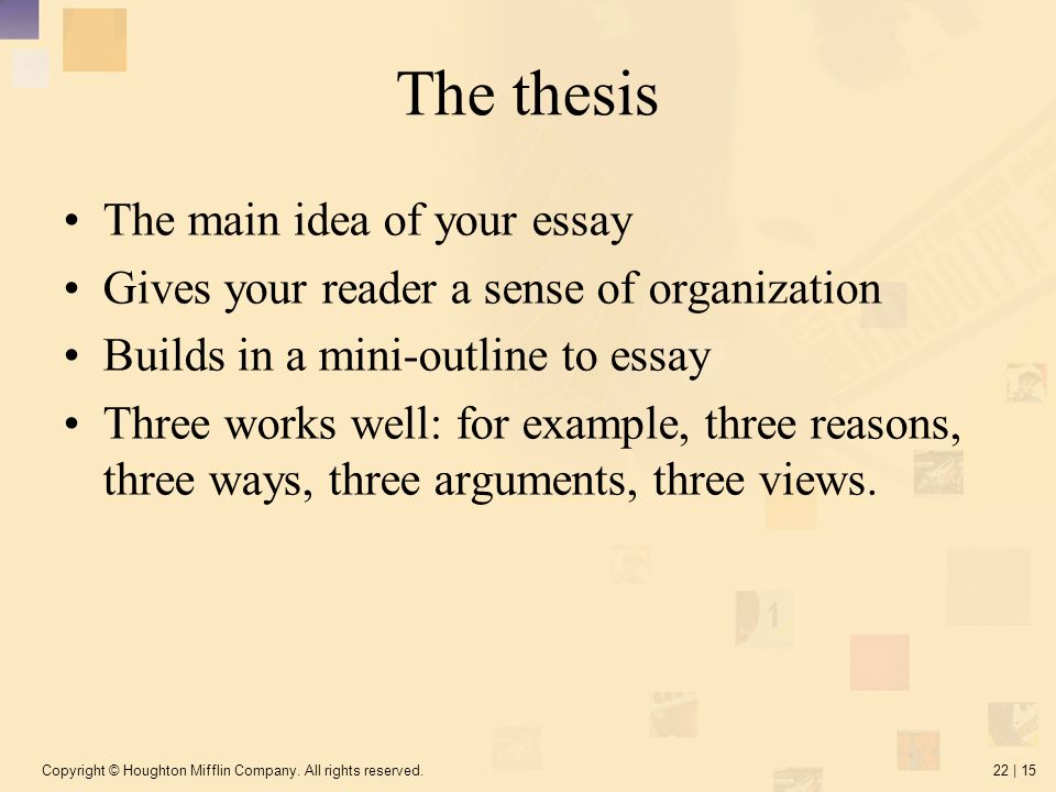main essay The essay important elements in the essay there are three main areas you need to consider when writing an essay you need to evaluate your (1) focus, (2) content and (3) organization.