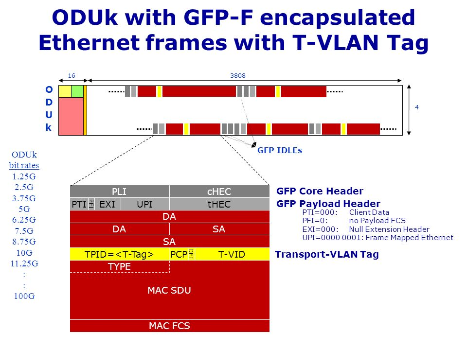 ODUk with GFP-F encapsulated Ethernet frames with T-VLAN Tag