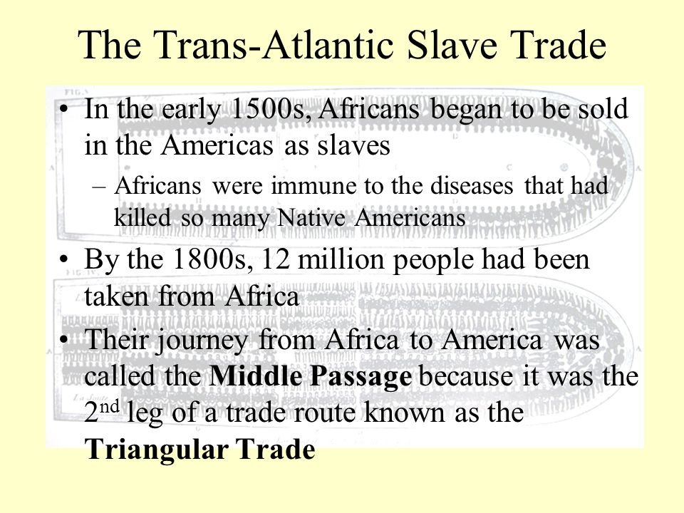 the slave trade and its effect on early america Essay: the slave trade and its effects on early america women in africa tags: africa slave trade west 3 comments on effect of the slave trade on west africa.