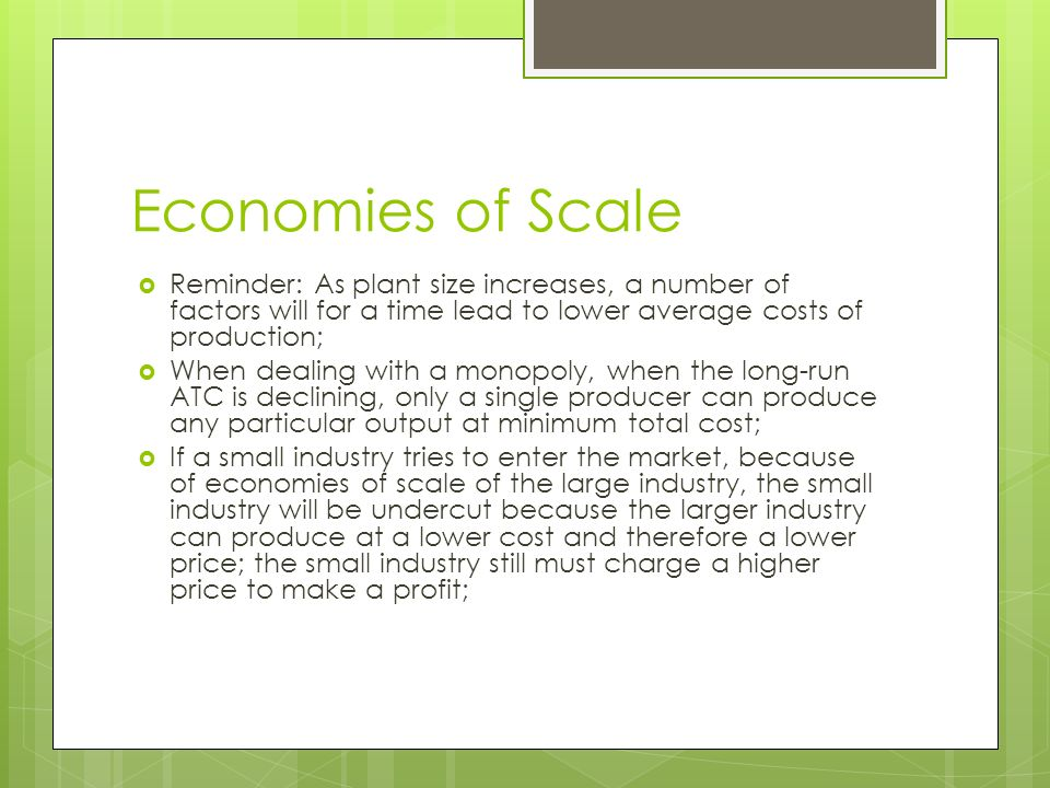 economies of the scale plant size economics essay Effects, spillovers, and external economies of scale, factors that have all  holds  across all industries and plant size classes suggests that  working paper  w13833, national bureau of economic research, cambridge  ma.