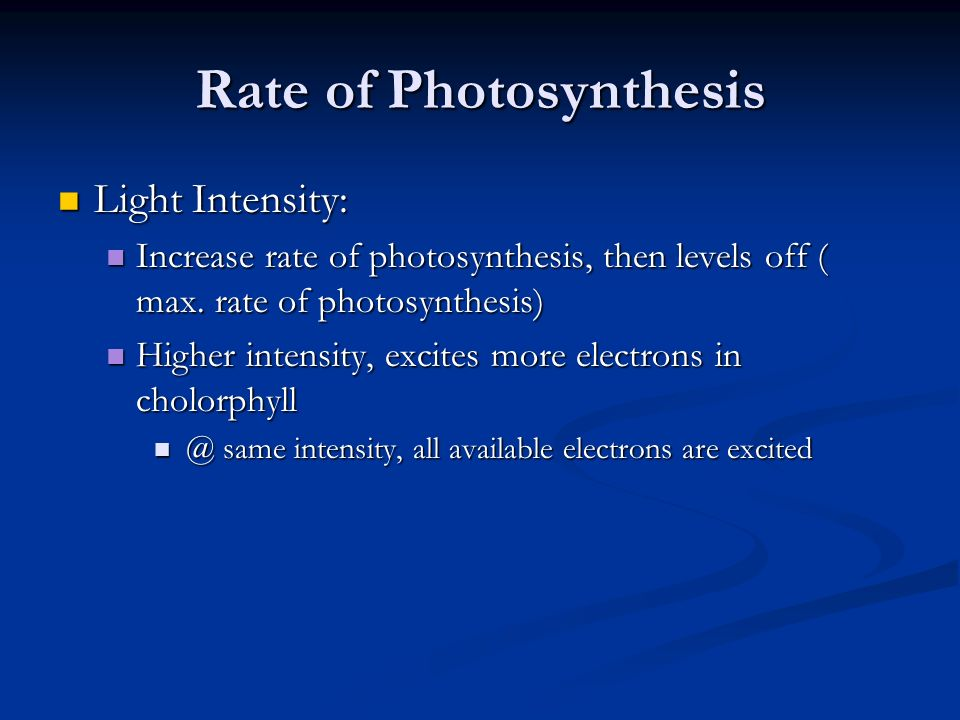 dark reaction of photosynthesis pdf