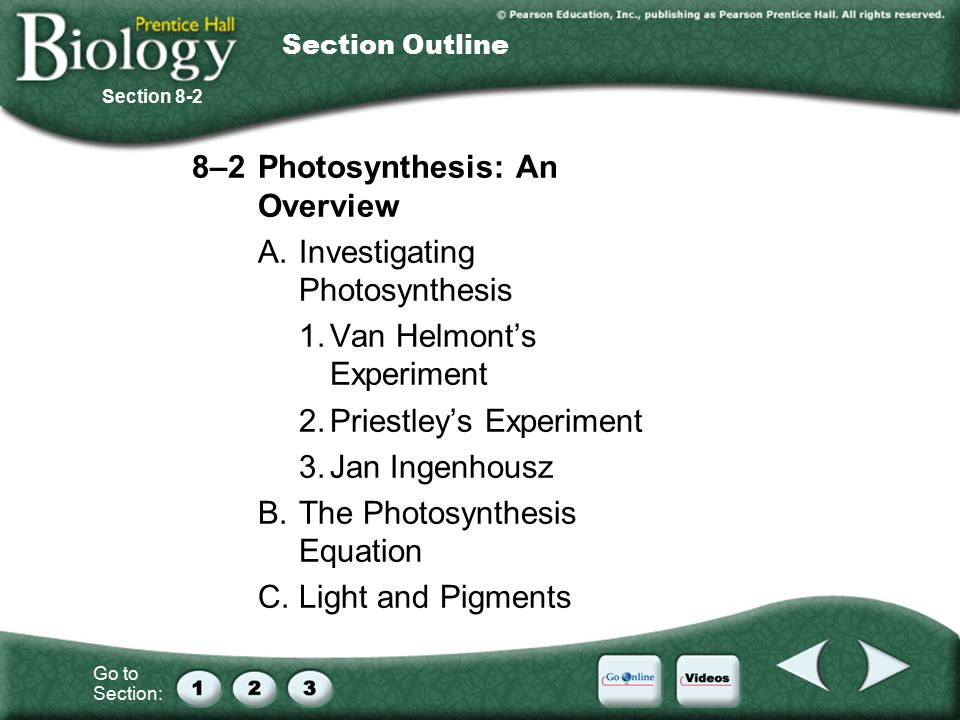 Jan Ingenhousz Experiment >> A. Autotrophs and Heterotrophs B. Chemical Energy and ATP - ppt download