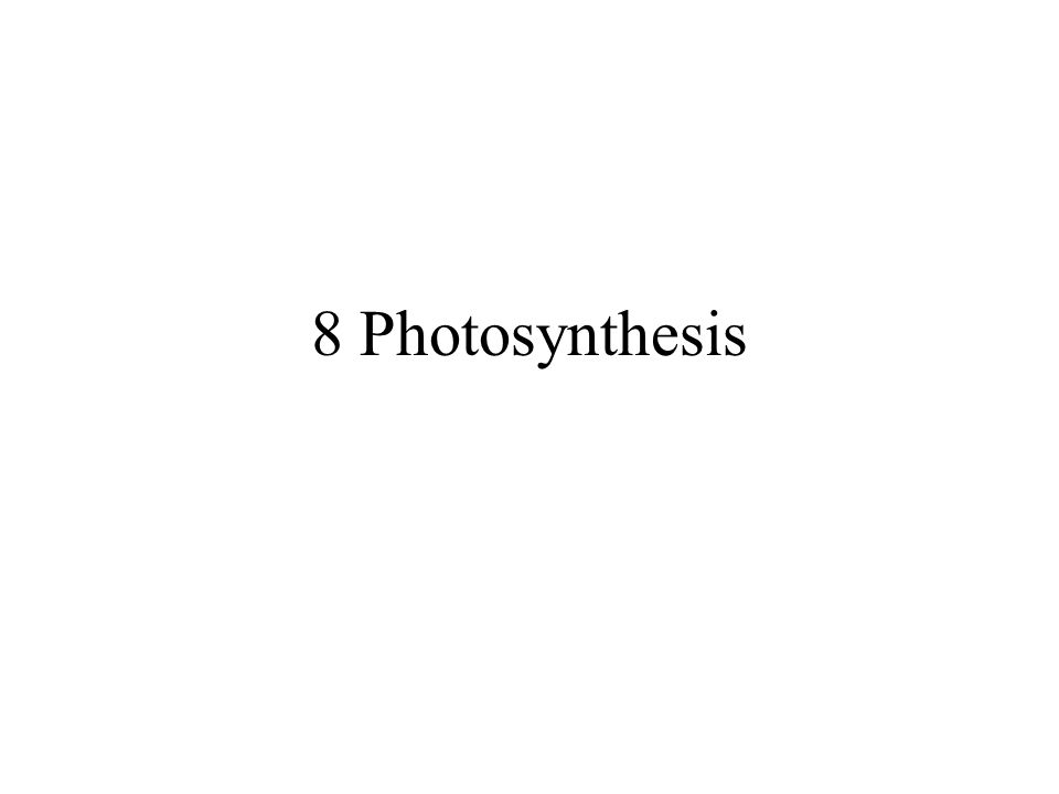 8 Photosynthesis