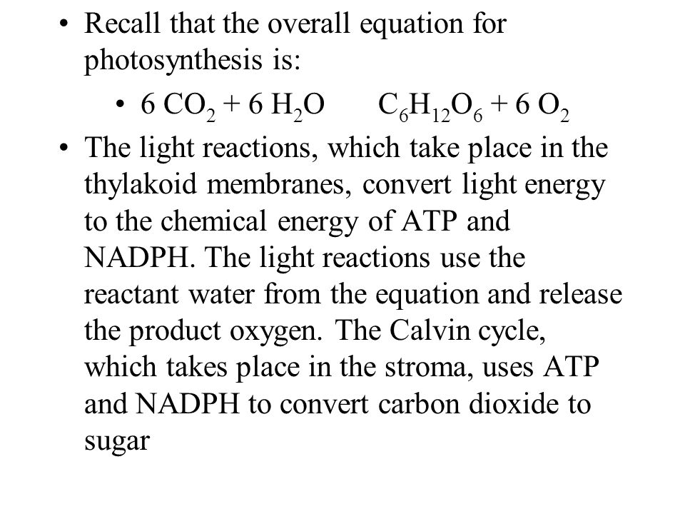 Recall that the overall equation for photosynthesis is: