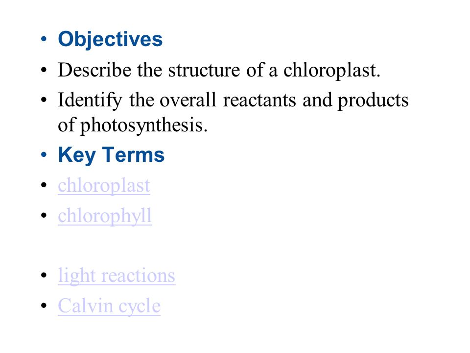 Objectives Describe the structure of a chloroplast. Identify the overall reactants and products of photosynthesis.