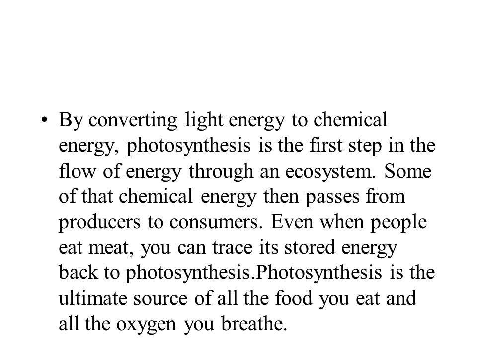 By converting light energy to chemical energy, photosynthesis is the first step in the flow of energy through an ecosystem.