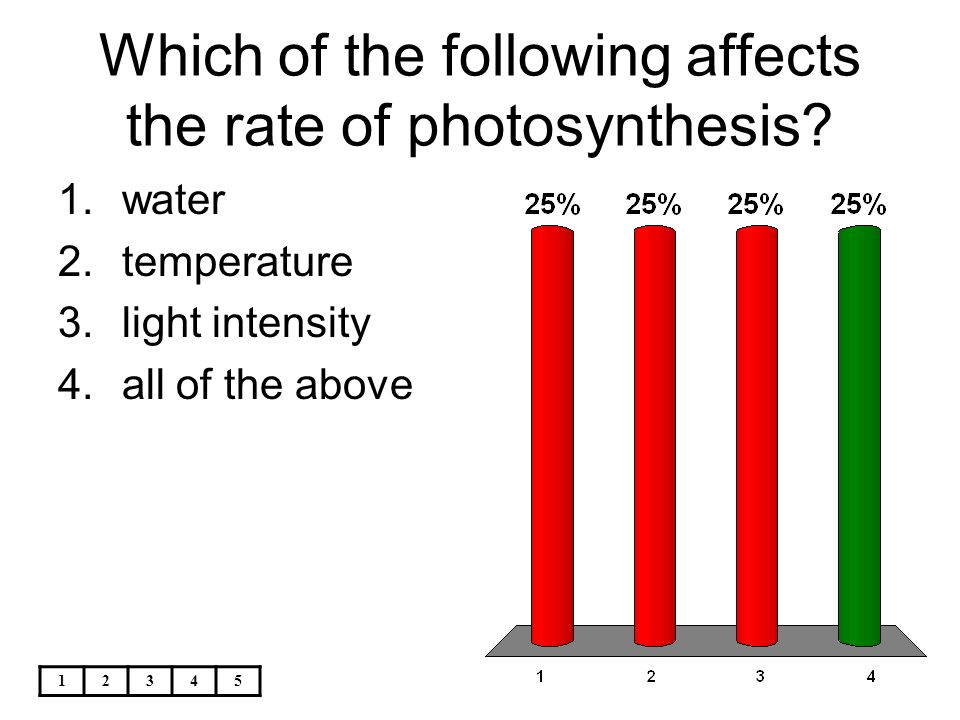 Identifying the conditions needed for photosynthesis