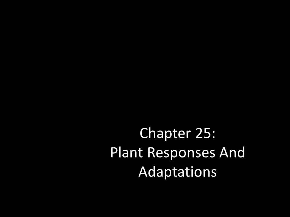 Chapter 25: Plant Responses And Adaptations