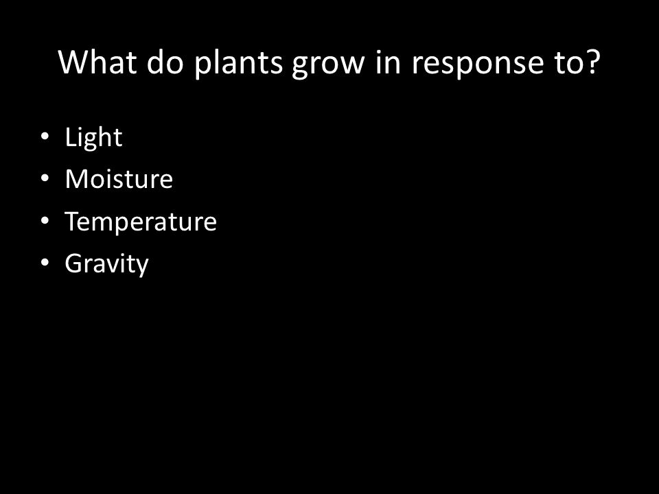 What do plants grow in response to