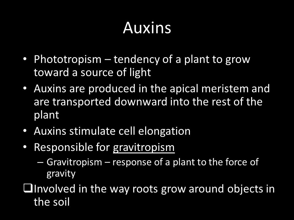 Auxins Phototropism – tendency of a plant to grow toward a source of light.