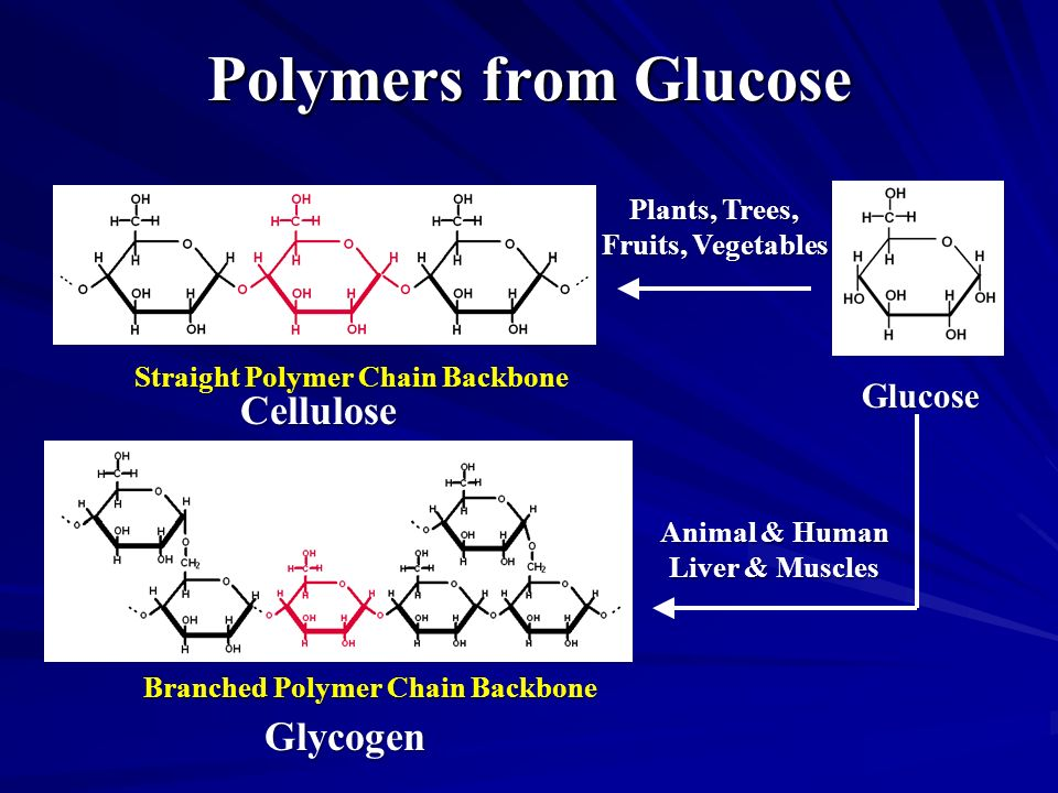 Polymers from Glucose Cellulose Glycogen Glucose Plants, Trees,