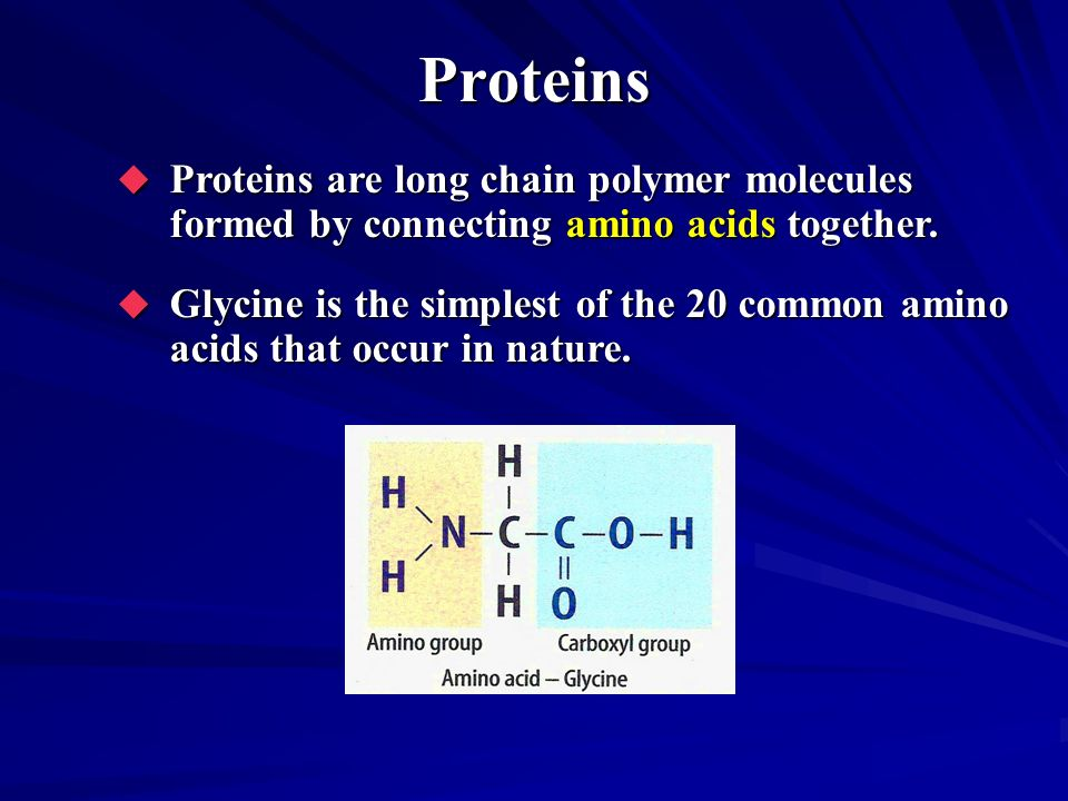 Proteins Proteins are long chain polymer molecules formed by connecting amino acids together.
