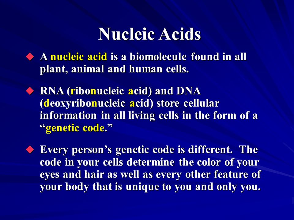Nucleic Acids A nucleic acid is a biomolecule found in all plant, animal and human cells.