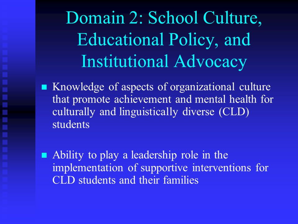 Domain 2: School Culture, Educational Policy, and Institutional Advocacy