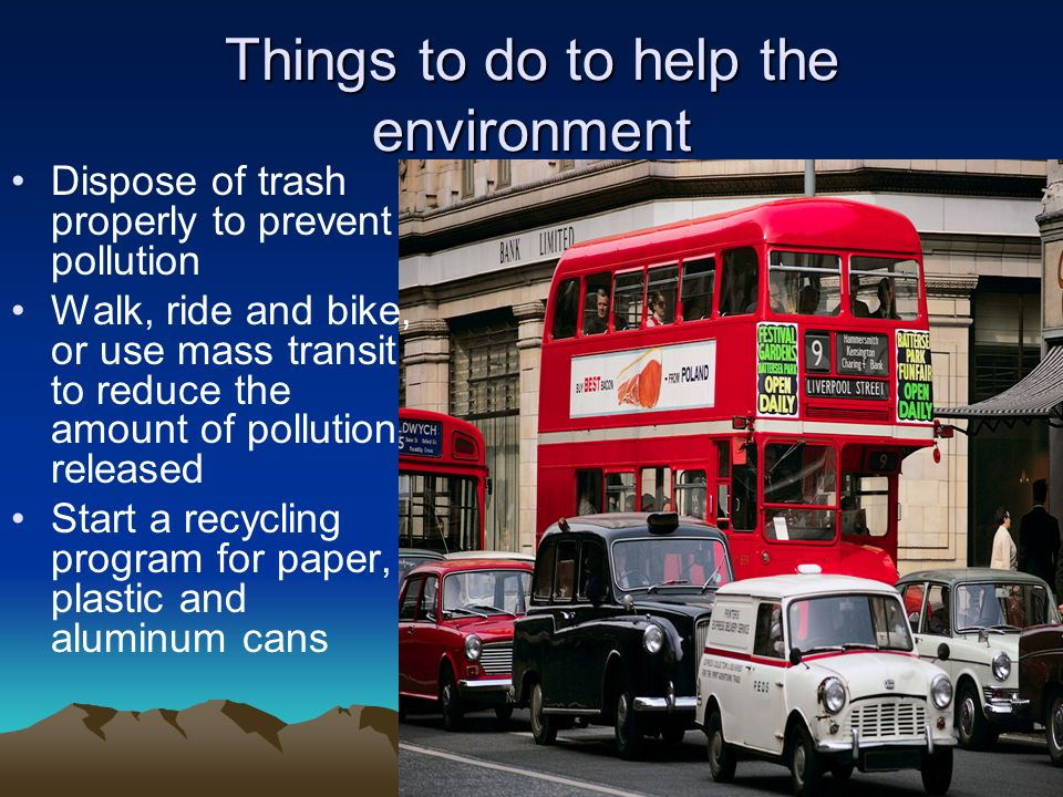 Things to do to help the environment