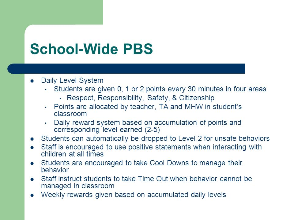 School-Wide PBS Daily Level System
