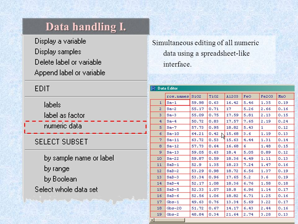 data editor in r