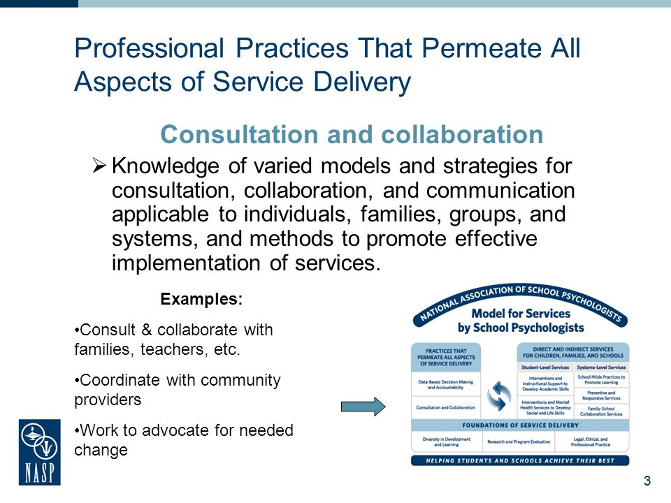 Professional Practices That Permeate All Aspects of Service Delivery