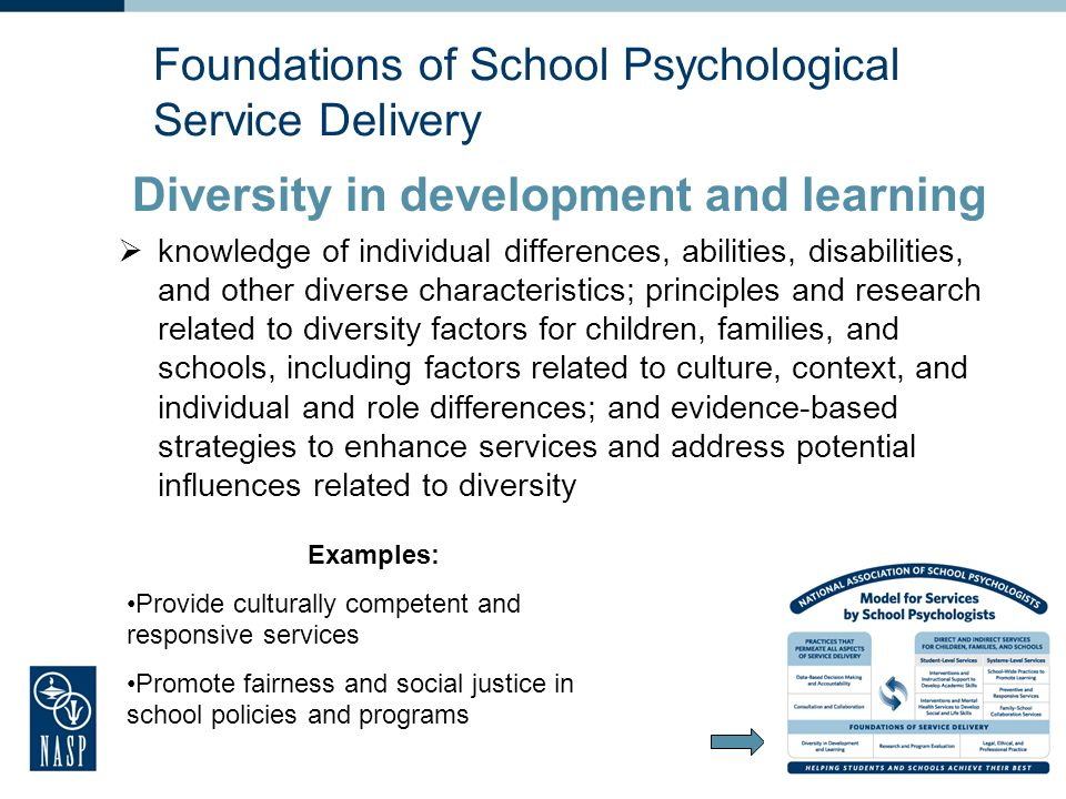 Foundations of School Psychological Service Delivery