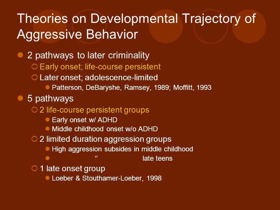Theories on Developmental Trajectory of Aggressive Behavior