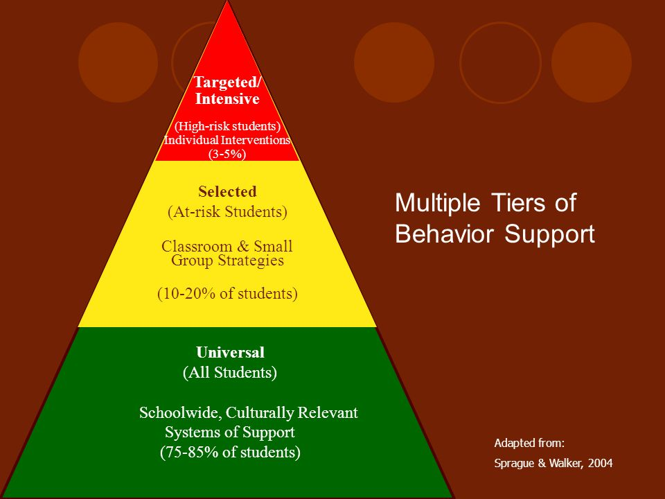 Multiple Tiers of Behavior Support
