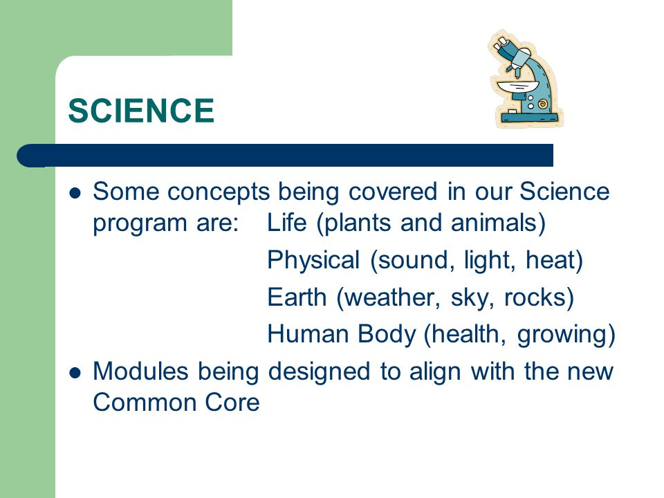 SCIENCE Some concepts being covered in our Science program are: Life (plants and animals) Physical (sound, light, heat)