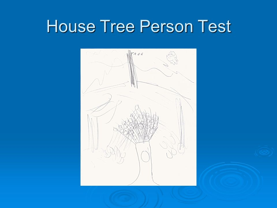 House Tree Person Test