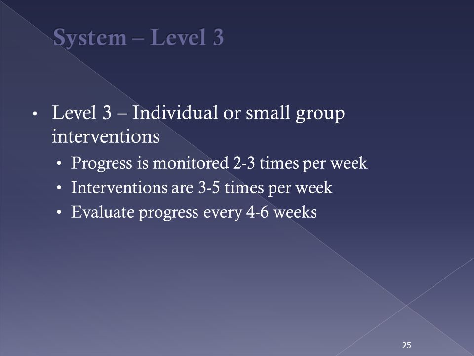 System – Level 3 Level 3 – Individual or small group interventions