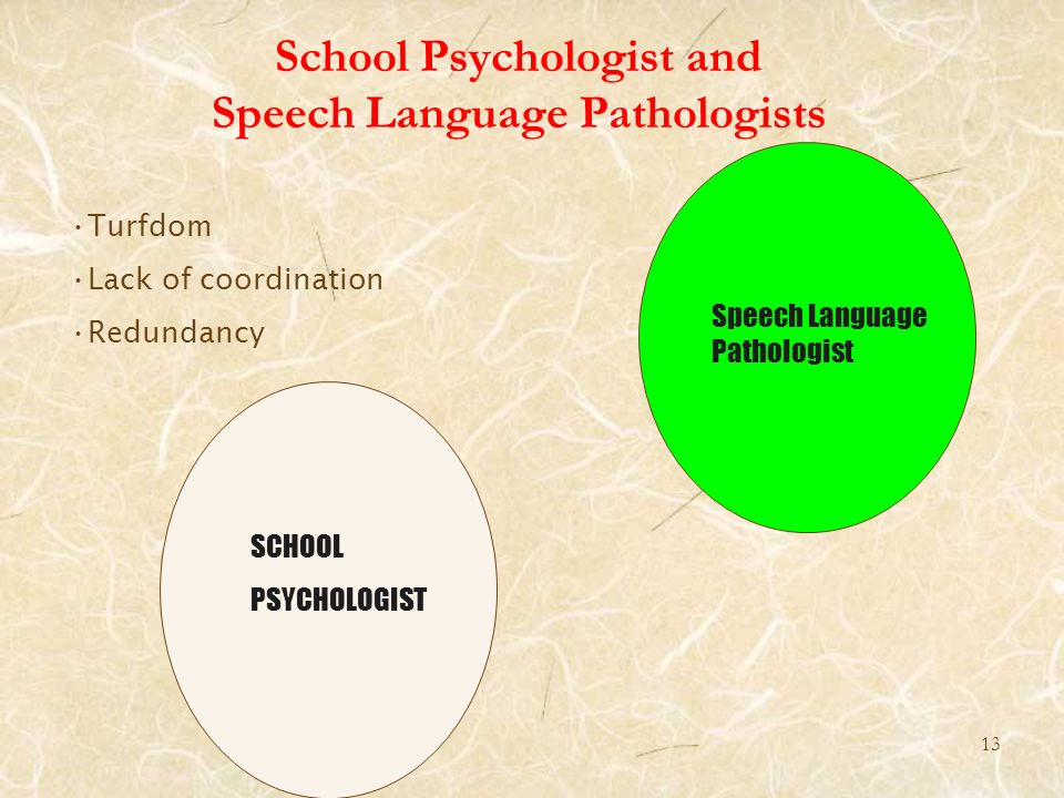 School Psychologist and Speech Language Pathologists