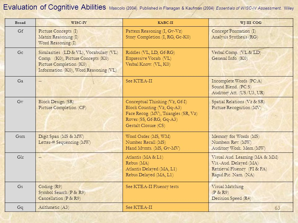 Evaluation of Cognitive Abilities Mascolo (2004)