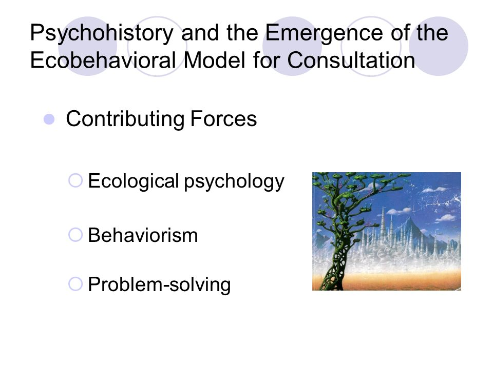 Psychohistory and the Emergence of the Ecobehavioral Model for Consultation