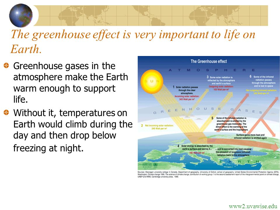 an overview of the greenhouse effect and the support for the life What is the greenhouse effect  these gases do a critical job ensuring the atmosphere holds onto enough heat to support every kind of life on the planet without .