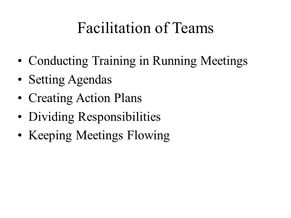 Facilitation of Teams Conducting Training in Running Meetings
