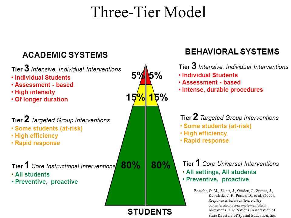 Three-Tier Model 5% 15% 80% BEHAVIORAL SYSTEMS ACADEMIC SYSTEMS
