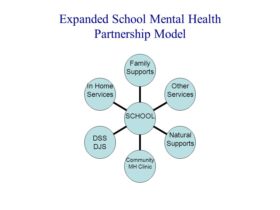 Expanded School Mental Health Partnership Model