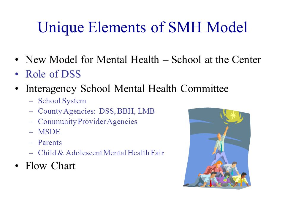 Unique Elements of SMH Model