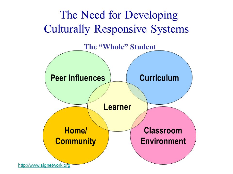 The Need for Developing Culturally Responsive Systems