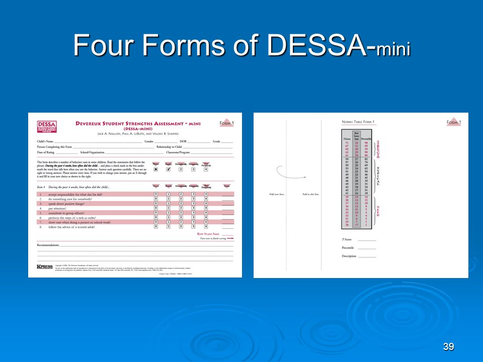 Four Forms of DESSA-mini
