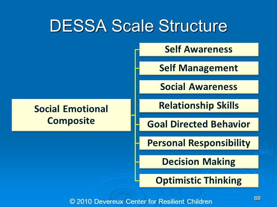 DESSA Scale Structure Self Awareness Self Management Social Awareness