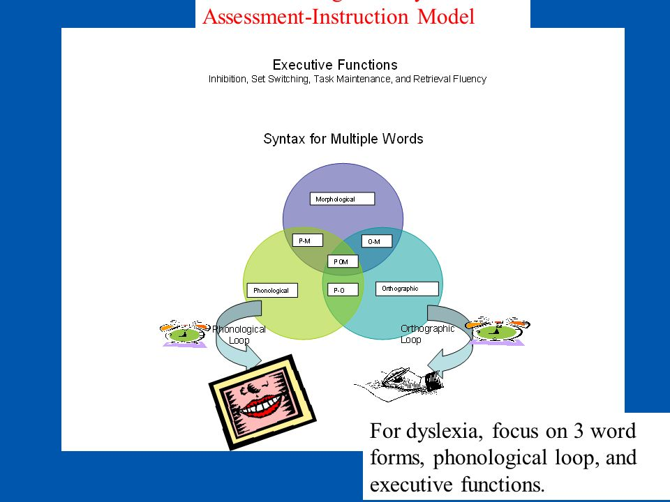 PAL II Working Memory Assessment-Instruction Model