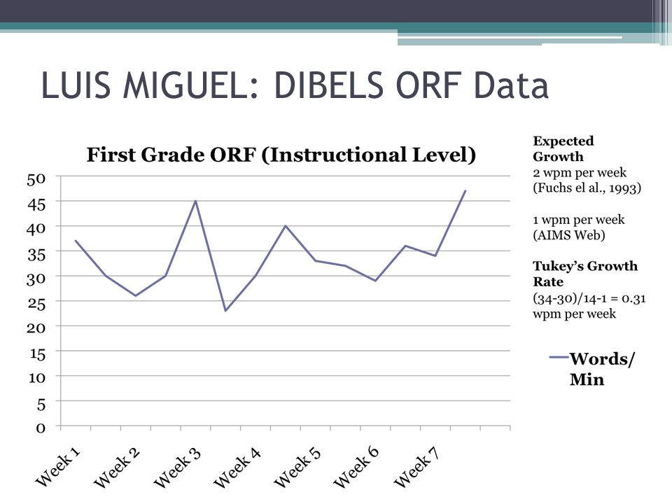 LUIS MIGUEL: DIBELS ORF Data