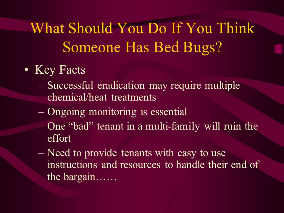 What Should You Do If You Think Someone Has Bed Bugs