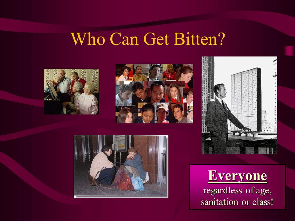 Everyone regardless of age, sanitation or class!
