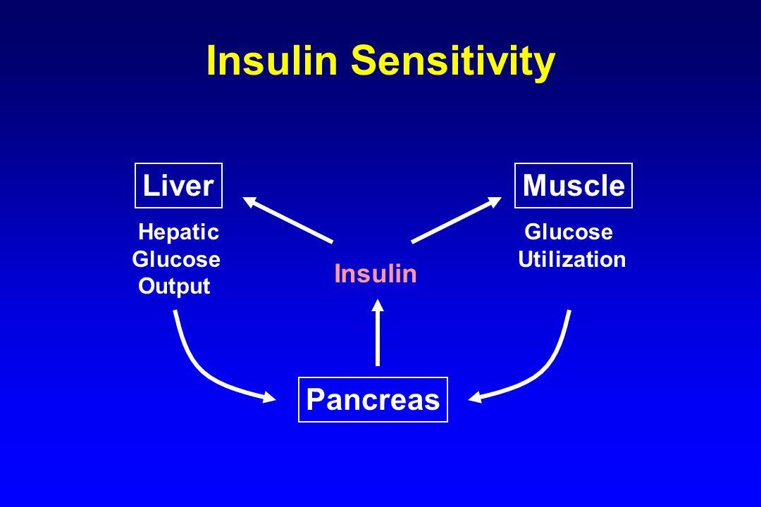 Insulin Sensitivity Liver Muscle Pancreas Insulin Hepatic Glucose